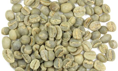 Zielona kawa i jej specyfika